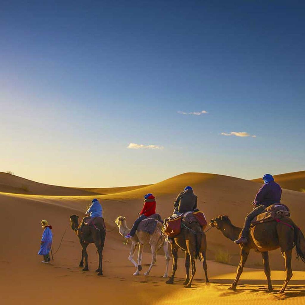 camel trekking in sahara desert Morocco