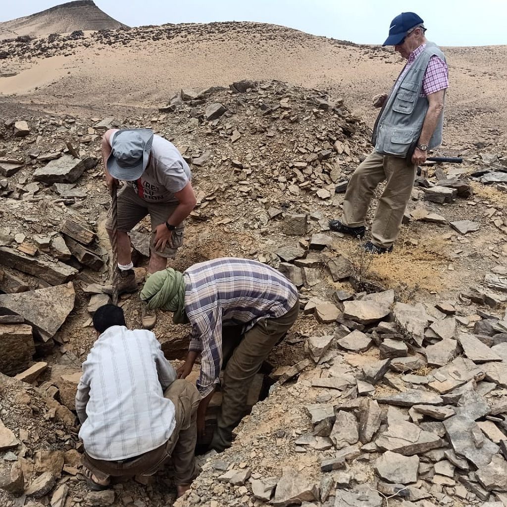 hunting fossils tours in morocco